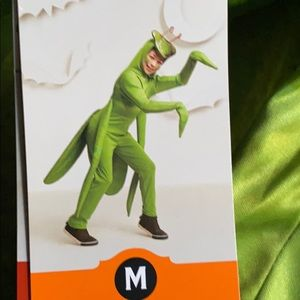 Other - M praying mantis insect Halloween costume